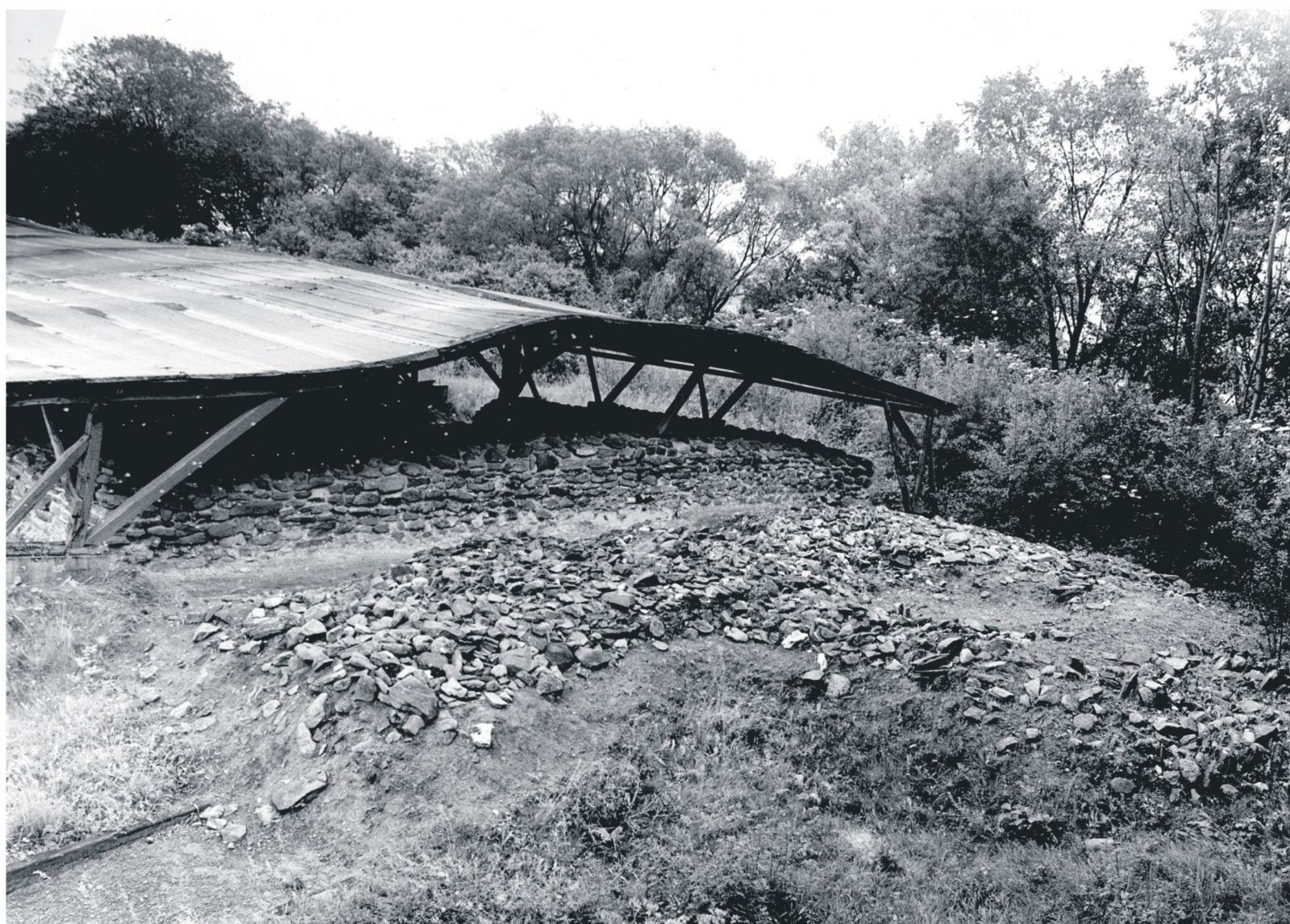 zadaszenie ruin palatium do 1978 roku
